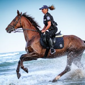 Policewoman riding horse in the water on the beach