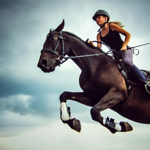 Female jockey with purebred jumping horse