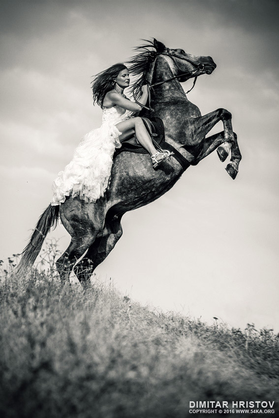 Woman in dress riding chestnut black rearing stallion photography featured equine photography black and white animals  Photo