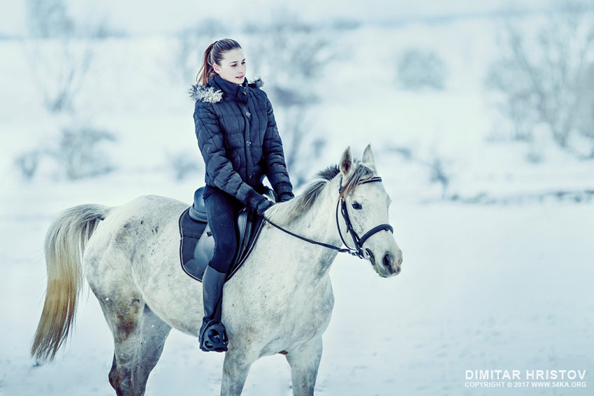 Running Horse In Snow Winter Landscape photography galleries equine photography animals  Photo