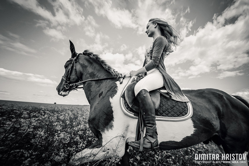 Girls Riding Horse In Beautiful Meadow