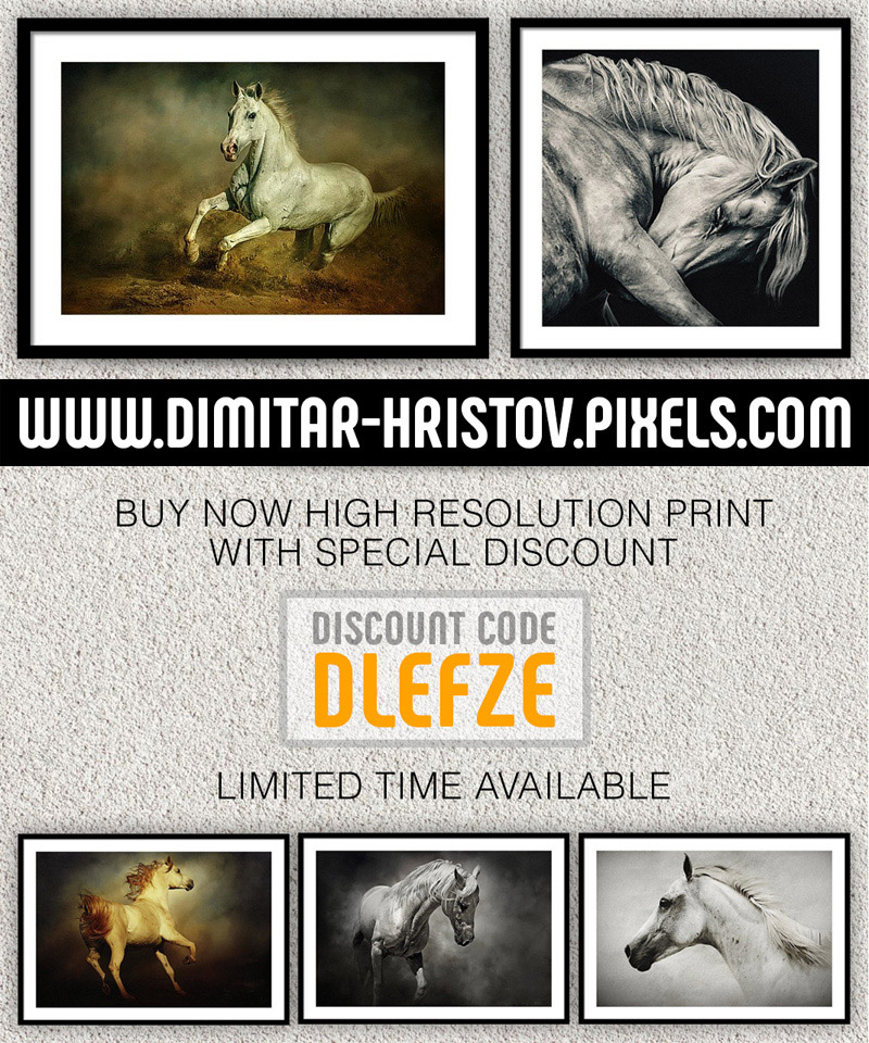 High resolution print with special discount photography news  Photo