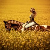 Young Woman Riding A Horse Across The Field