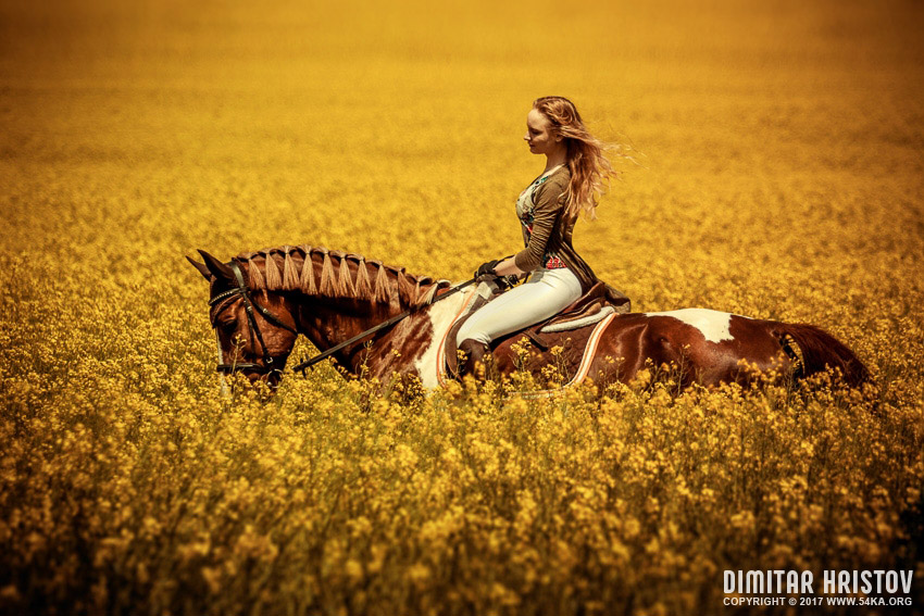 Young Woman Riding A Horse Across The Field photography featured equine photography  Photo