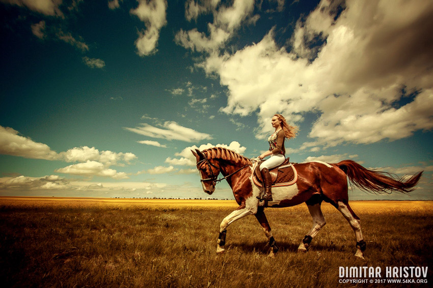 Girl riding horse on the beautiful landscape photography top rated featured equine photography animals  Photo