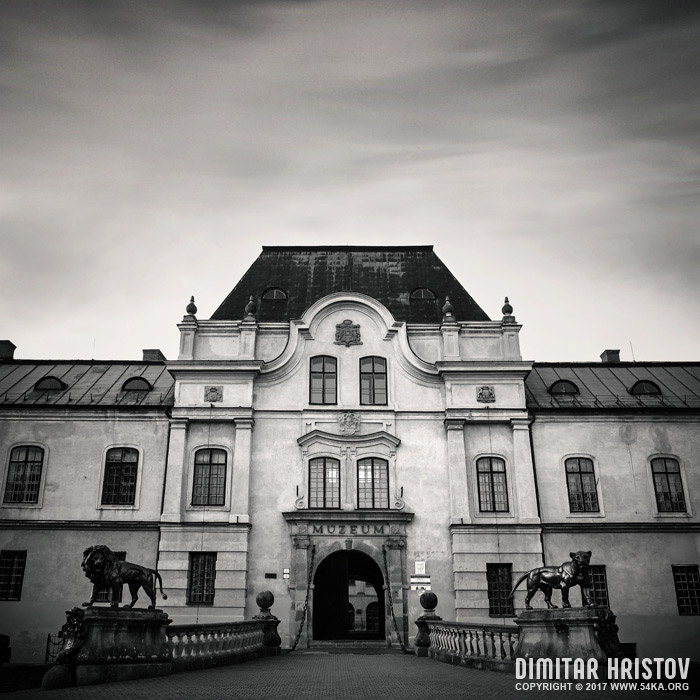 Vihorlatske muzeum   The Manor House in Humenne, Slovakia photography urban black and white  Photo