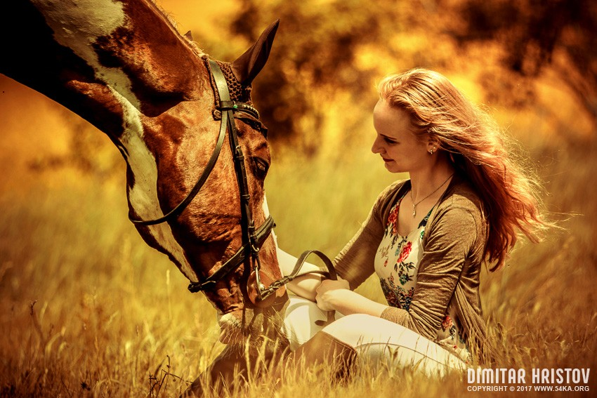 Girl and beautiful horse on autumn field photography portraits top rated featured equine photography  Photo