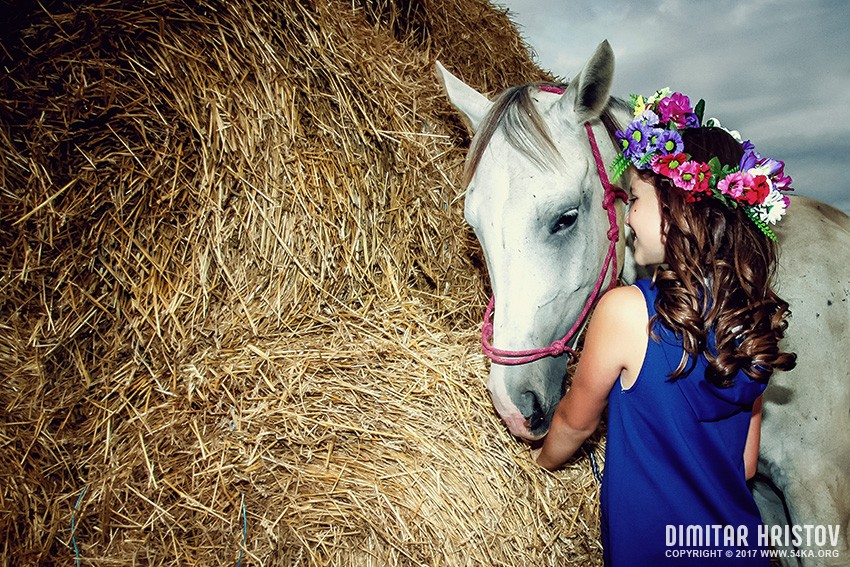 Kid with horse photography portraits equine photography daily dose animals  Photo