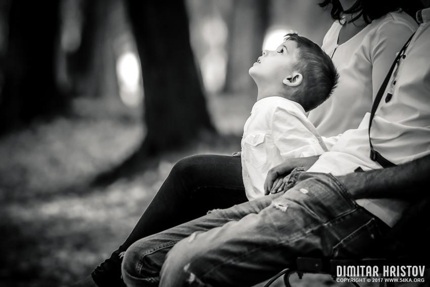 Little boy portrait photography portraits daily dose  Photo