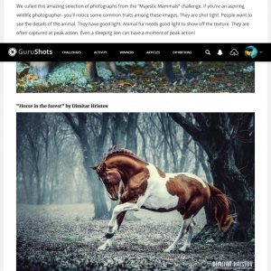 39 of Earth's Finest Creatures by GuruShots