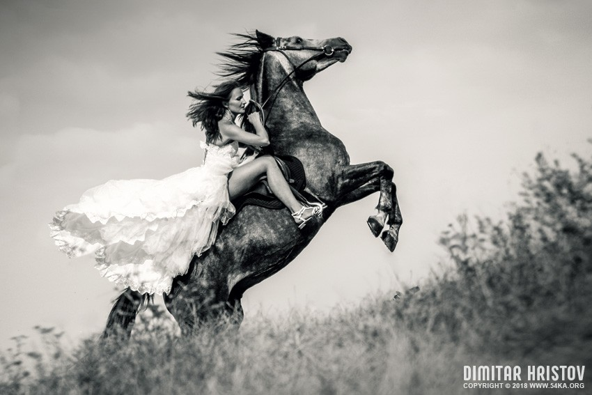 Bride in wedding dress riding a horse photography top rated featured fashion equine photography black and white  Photo