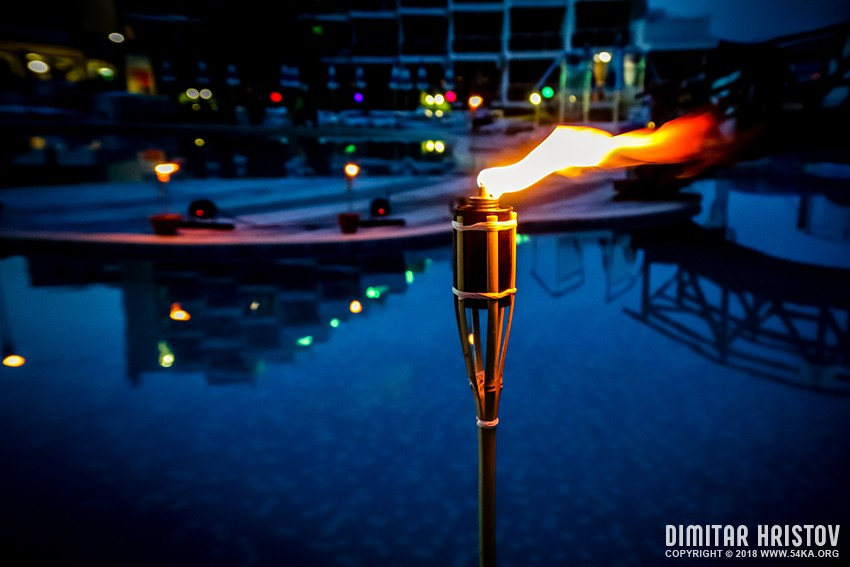 Torch On The Pool photography other daily dose  Photo