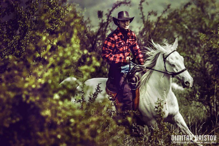 Horse Racing III - 54ka [photo blog]