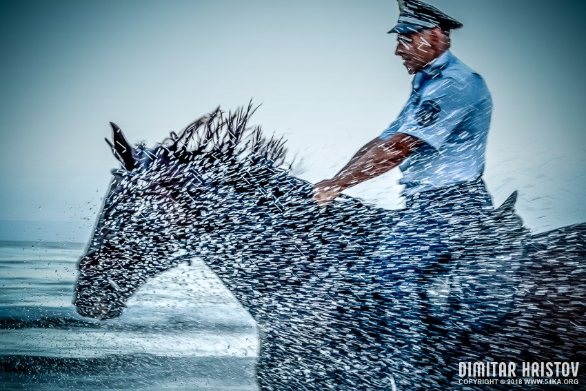 Policeman Riding Horse in The Storm photography featured equine photography  Photo
