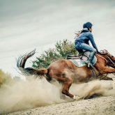 Braveheart – Horse Fall Down Crash