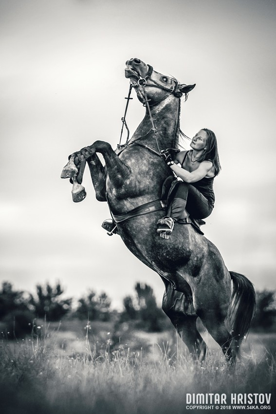 Girl and Rearing Up Horse photography featured equine photography black and white animals  Photo