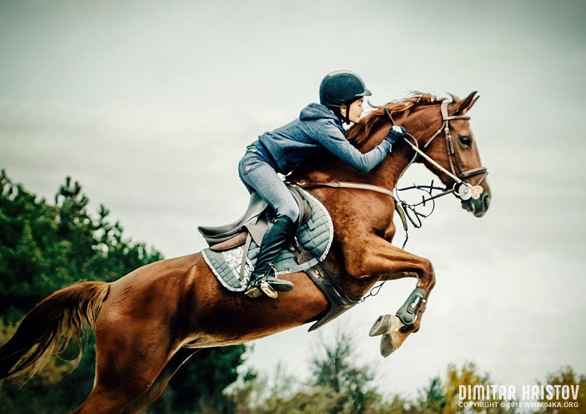 Girl Jumping With Horse photography sport featured equine photography animals  Photo