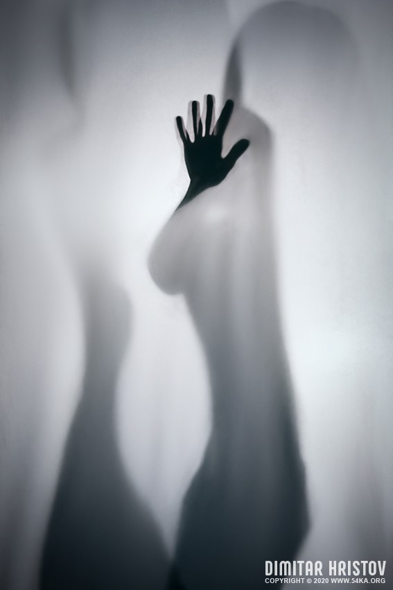 Hand silhouette   studio photography photography other black and white  Photo