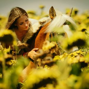 Portrait of a woman with a horse in a field of sunflowers