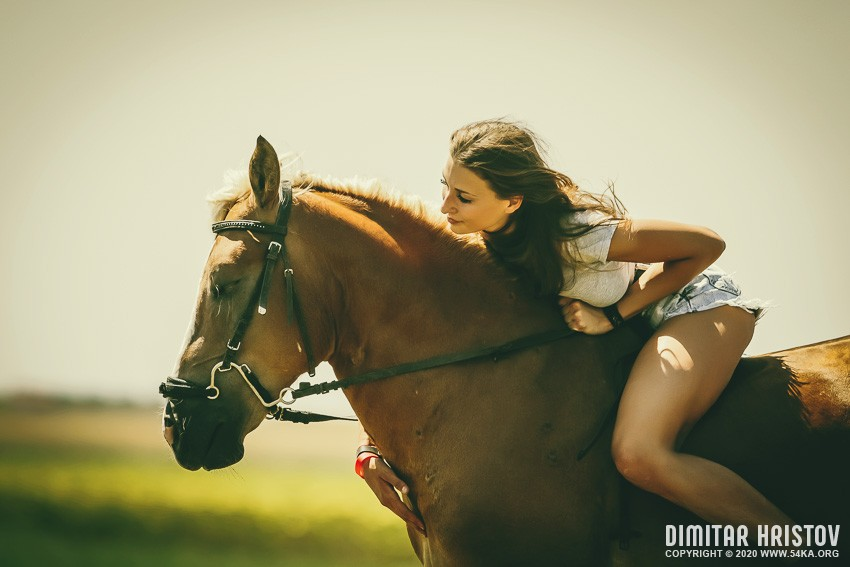 Woman and her horse at sunset   Summer outdoors scene photography portraits top rated featured equine photography animals  Photo