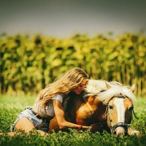 Woman sits at lying horse on the pasture background
