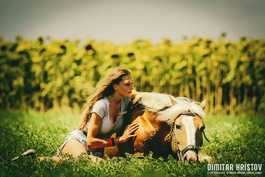 Young girl sitting on the grass caressing her lying horse photography featured equine photography animals  Photo